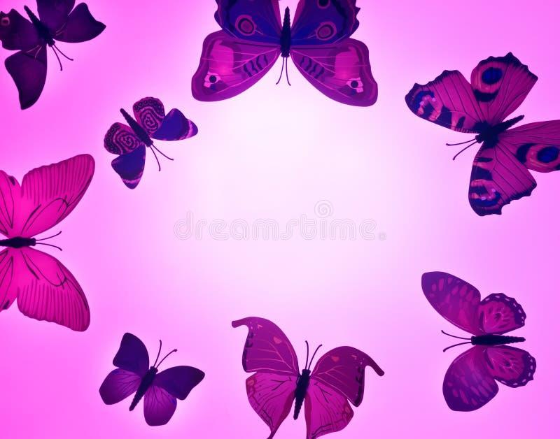 Trzy różowy motyl, odizolowywający na białym tle ilustracja wektor