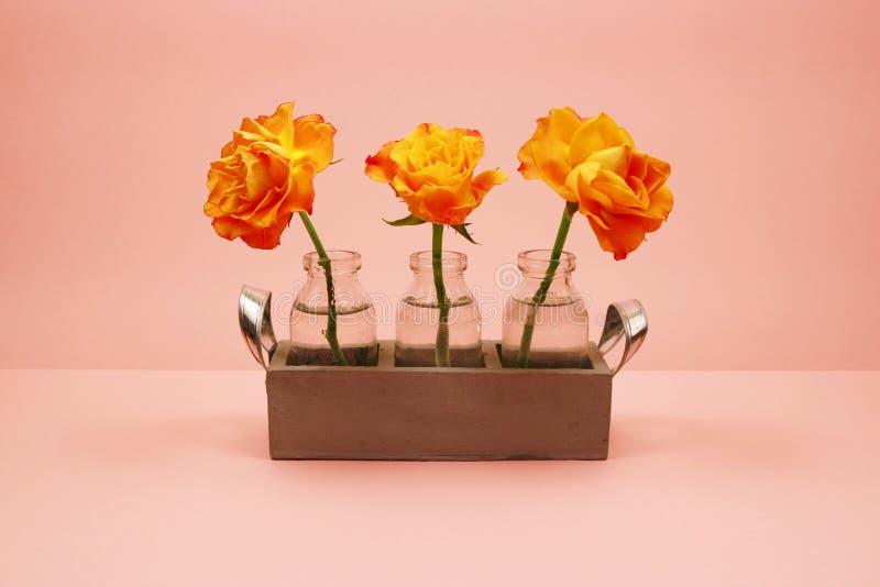 Trzy róży w szklanej butelce na różowym tle zdjęcie royalty free