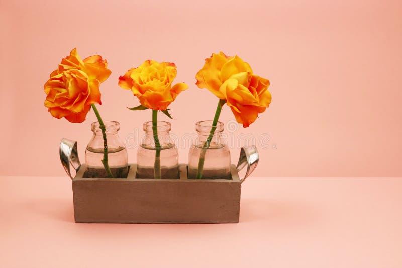 Trzy róży w szklanej butelce na różowym tle fotografia stock