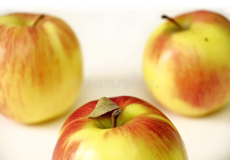 Trzy rewolucjonistki jabłka na białym tle Horyzontalny strzał obraz royalty free