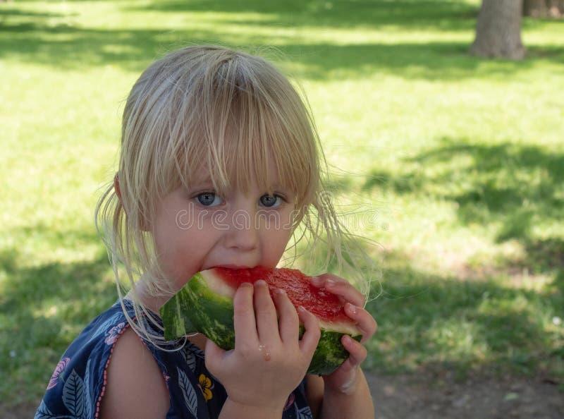 Trzy roczniaka Kaukaski Żeński Zjadliwy arbuz z soku bieg puszka palcami obrazy royalty free