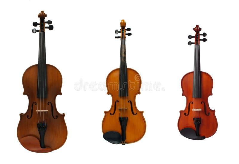 trzy skrzypce zdjęcia royalty free