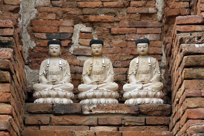 Trzy statuy Buddhas w Ayutthaya w Tajlandia obraz royalty free