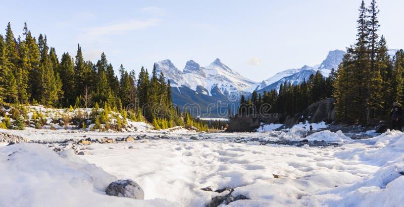 Trzy szczyty sióstr, Canmore, Alberta obrazy stock