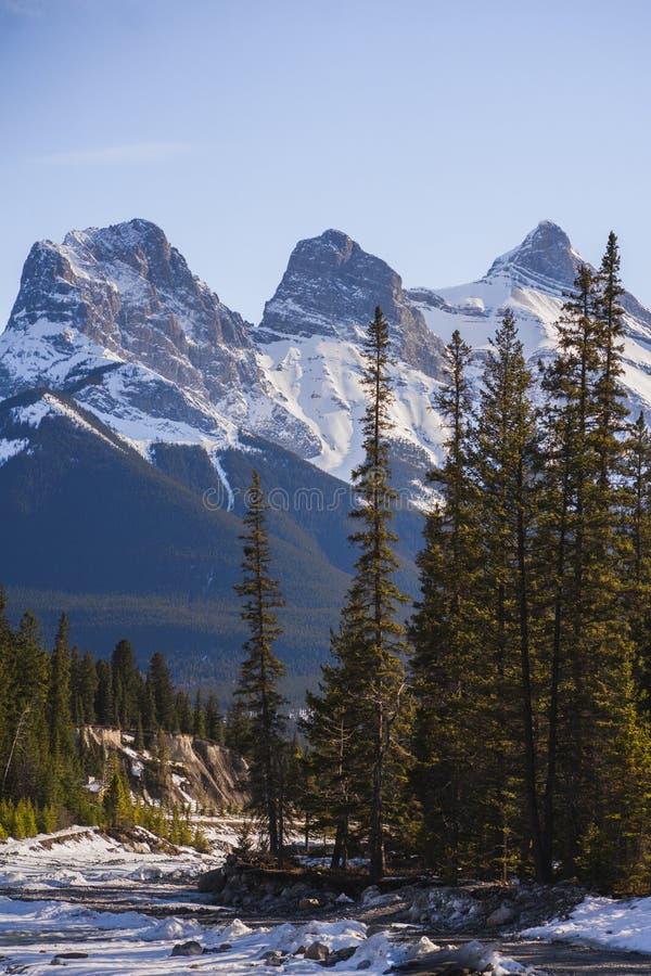 Trzy szczyty sióstr, Canmore, Alberta zdjęcie stock