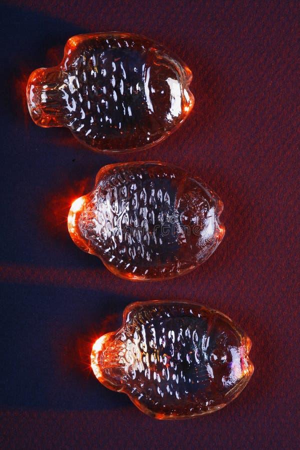 trzy szkła ryb zdjęcia stock
