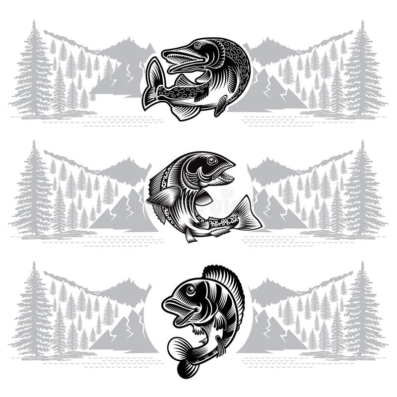 Trzy sztandaru z łososiem, szczupak, żerdzi ryby chyłu sylwetka z dzikim krajobrazem w engrving stylu Logo dla łowić, mistrzostwo ilustracja wektor