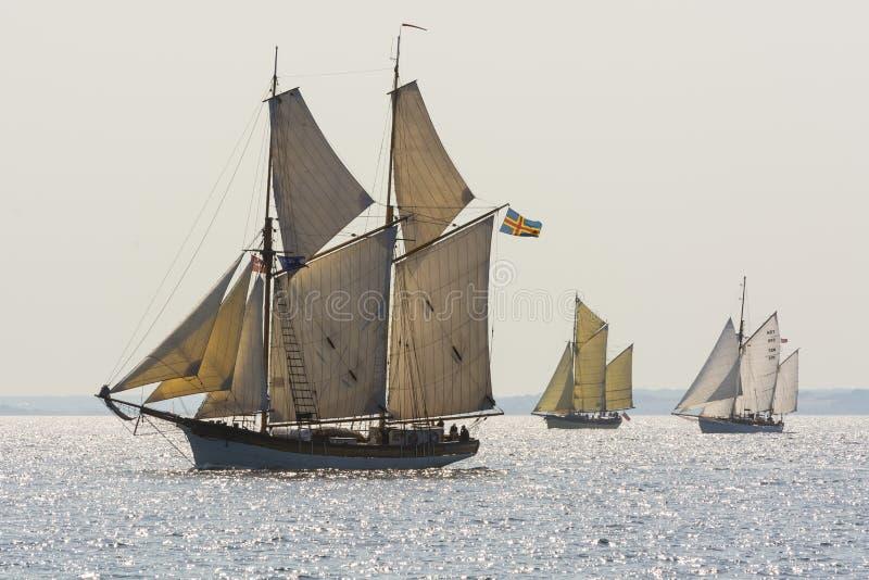 Trzy tradycyjnego żeglowania gaffriggers zdjęcie stock