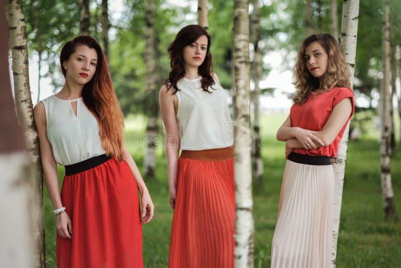 Trzy ufnej przypadkowej kobiety stoi między brzozą zdjęcia stock