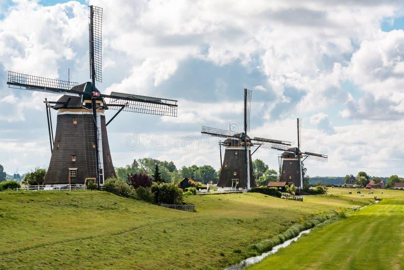 Trzy wiatraczka ` Driemolengang Leidschendam ` pod pięknym chmurniejącym niebem fotografia royalty free