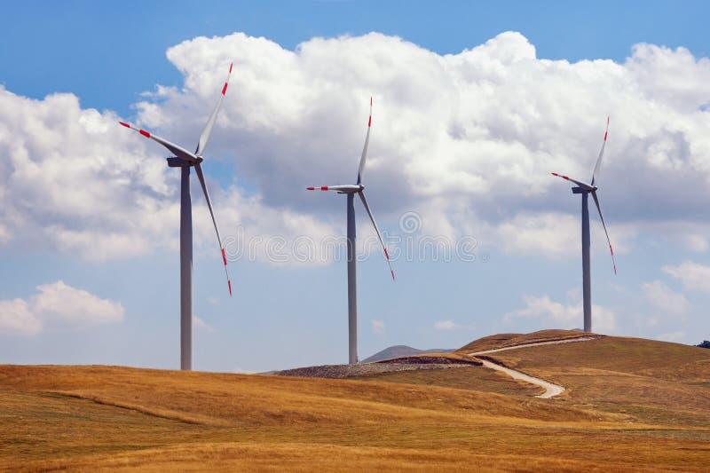 Trzy wiatraczka na tle żółci paśniki i niebieskie niebo z białymi chmurami Montenegro, Niksic, Krnovo zdjęcie royalty free