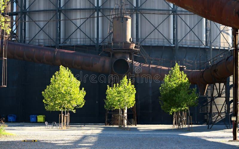 Trzy zielonego drzewa w kontrascie stary park przemysłowy Dolni oblast Vitkovice w Ostrava obrazy royalty free