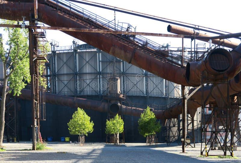 Trzy zielonego drzewa w kontrascie stary park przemysłowy Dolni oblast Vitkovice w Ostrava zdjęcie stock