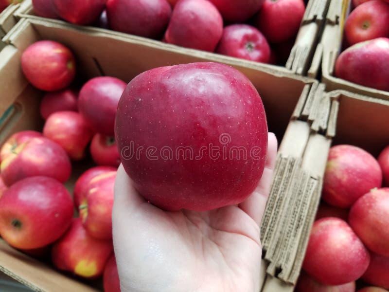 Trzymać jabłka przy owoc kramem zdjęcia stock