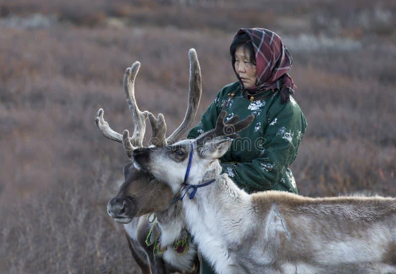 Tsaatanvrouw met rendier in Noordelijk Mongools landschap royalty-vrije stock afbeelding