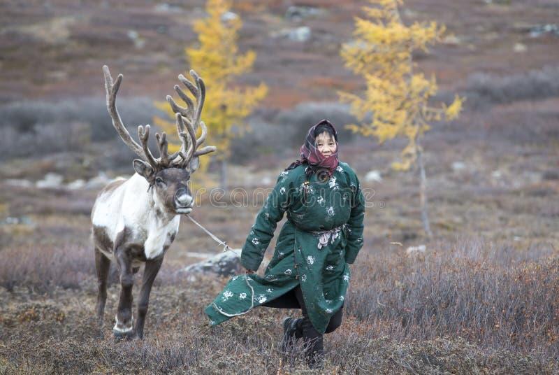Tsaatanvrouw met rendier in Noordelijk Mongools landschap royalty-vrije stock fotografie