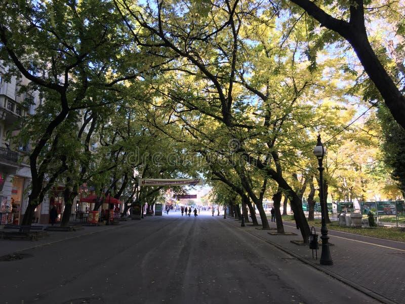 Tsar Simeon Veliki boulevard. In Stara zagora bulgaria royalty free stock photos