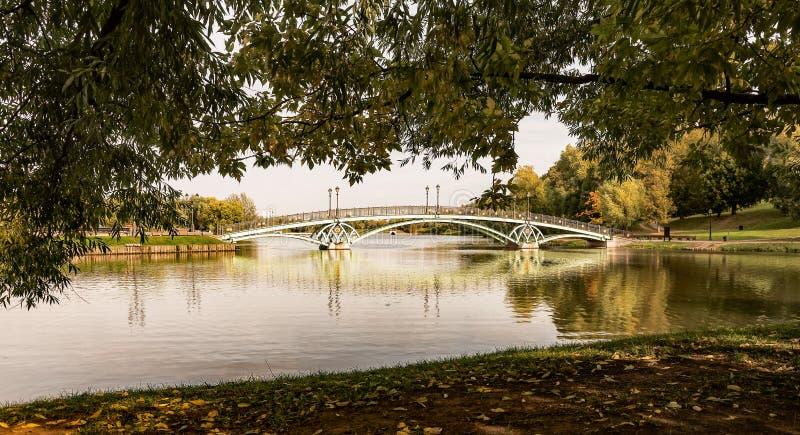 Tsaritsyno Γέφυρα ανατολικών αψίδων στοκ εικόνες με δικαίωμα ελεύθερης χρήσης