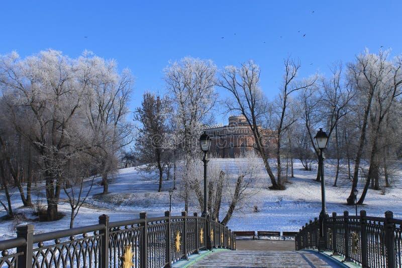 Tsaritsyno, Moskwa zdjęcie royalty free