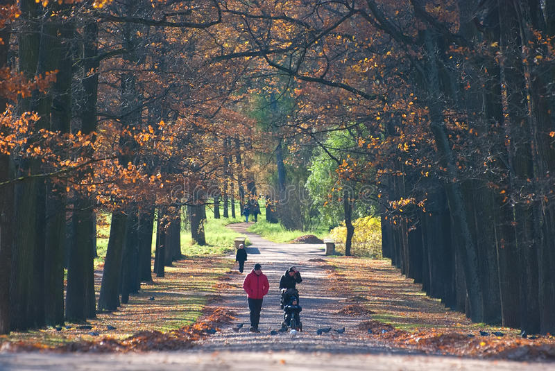 Tsarskoye Selo (Pushkin) St Petersburg Rusia Gente en Catherine Park imagenes de archivo