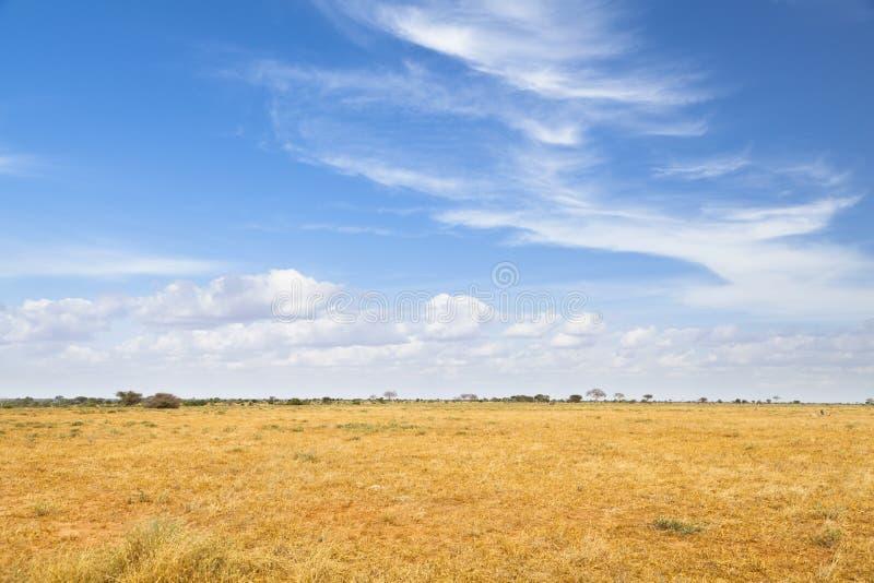Tsavo East Landscape in Kenya royalty free stock photos