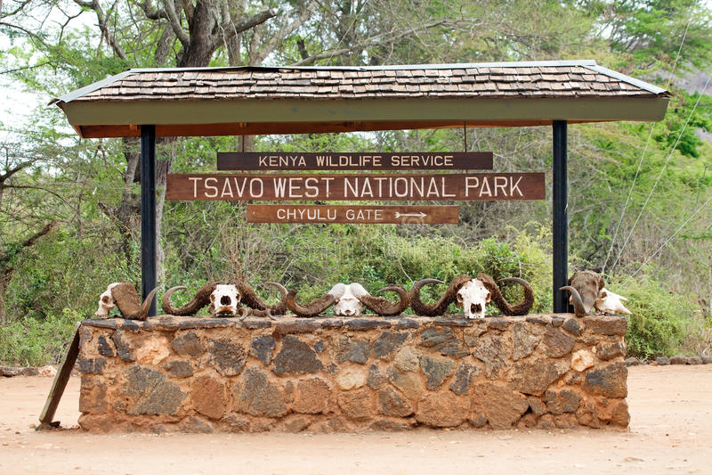 Tsavo Ostnationalpark lizenzfreies stockfoto