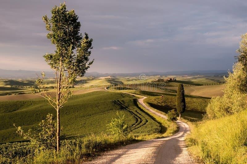 Tscany fotografia de stock