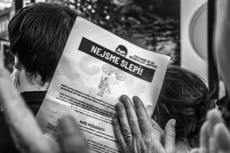 Tschechische Demonstrationsfahnen lizenzfreies stockbild