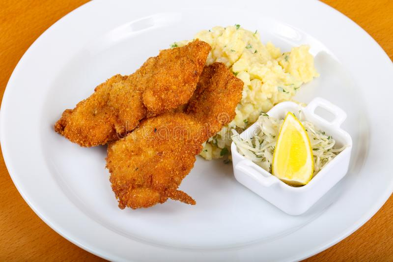 Tschechische Küche - Schnitzel lizenzfreie stockfotos
