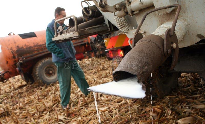 Tschechische Landwirte melken Protest lizenzfreies stockfoto