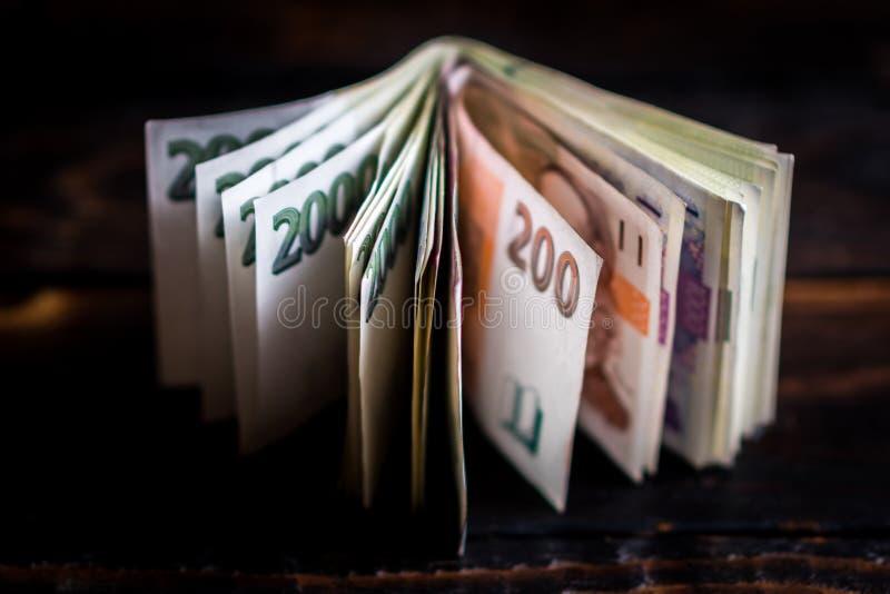 Tschechisches Papiergeld in der ledernen Geldbörse stockfoto