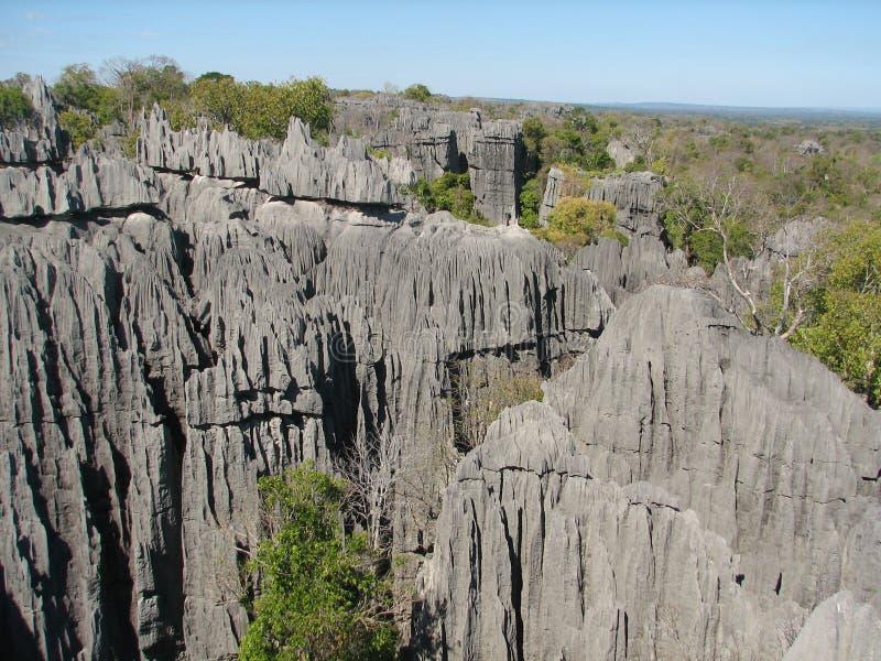 Tsingy of Bemaraha royalty free stock photo