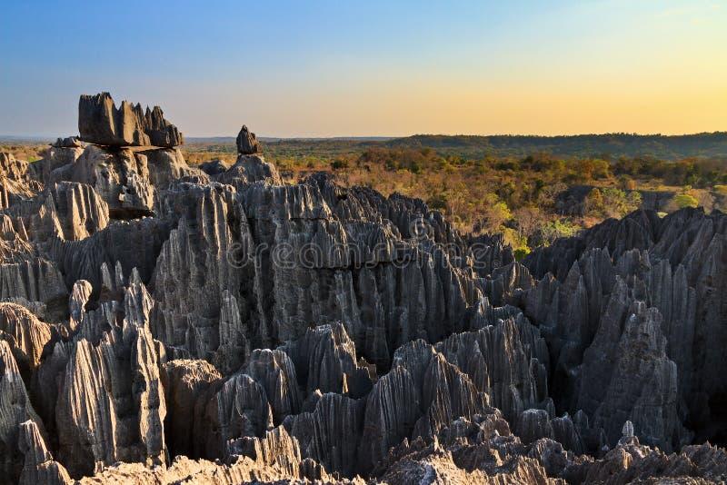 Tsingy de bemaraha风景 免版税库存图片