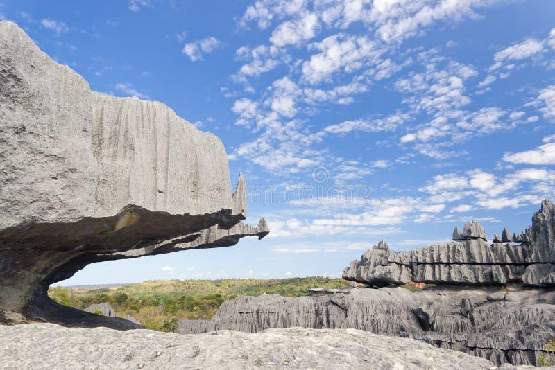 Tsingy de Bemaraha royalty free stock image