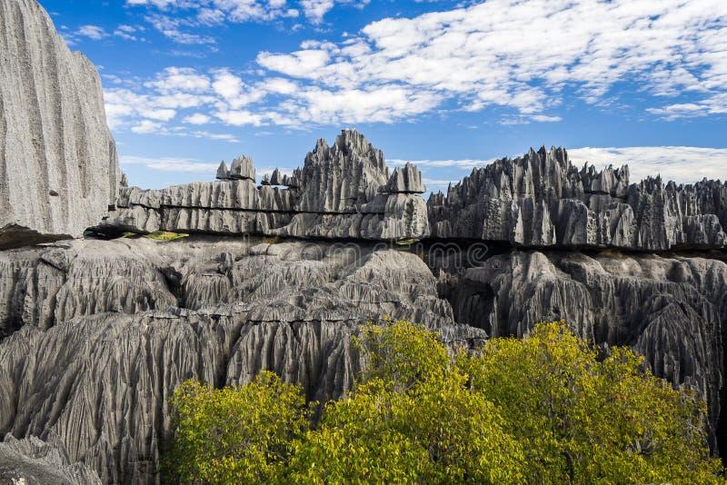 Tsingy DE Bemaraha royalty-vrije stock fotografie