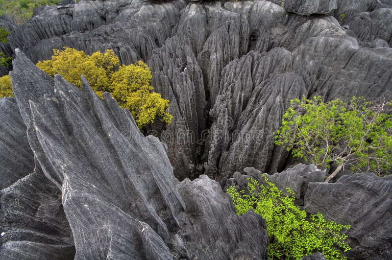 Tsingy de Bemaraha royalty free stock images