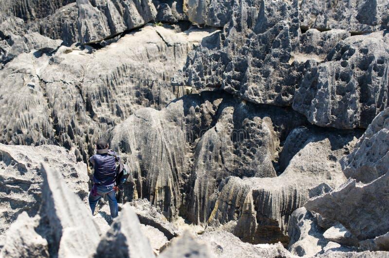 Tsingy De Bemaraha Rezerwujący fotografia royalty free