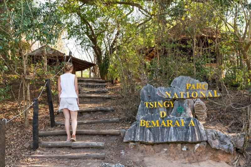 Tsingy entrance stock photo