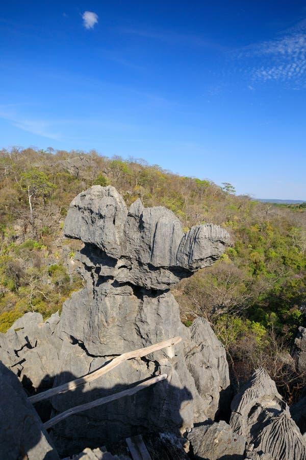 Tsingy-Felsformationen in Ankarana, Madagaskar lizenzfreies stockfoto