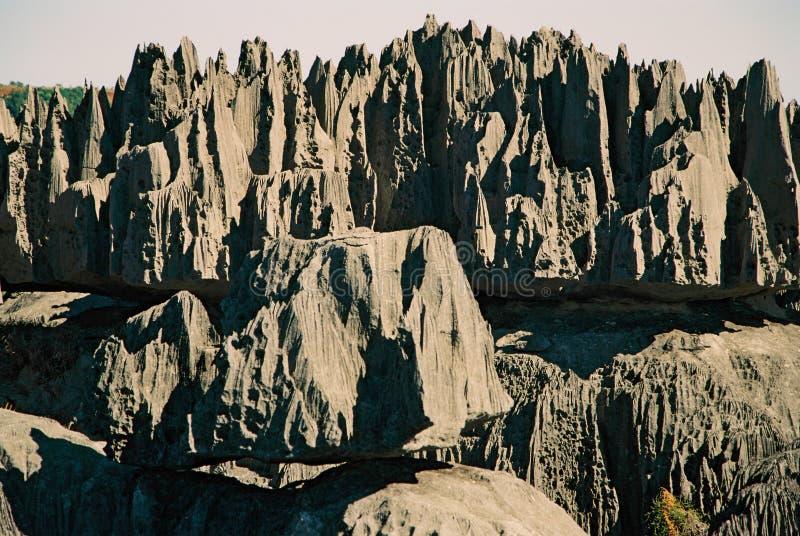 tsingy madagascar arkivbilder