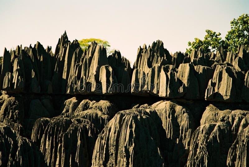 Tsingy Madagaskar lizenzfreies stockfoto