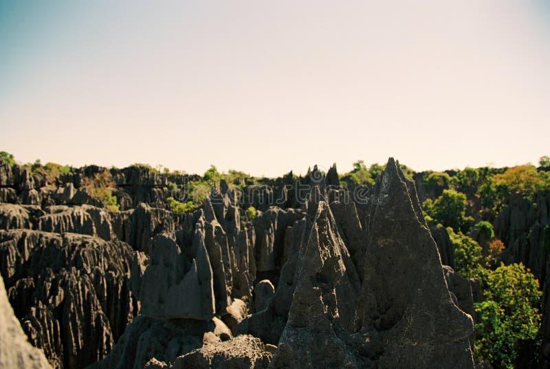 Tsingy Madagaskar lizenzfreies stockbild
