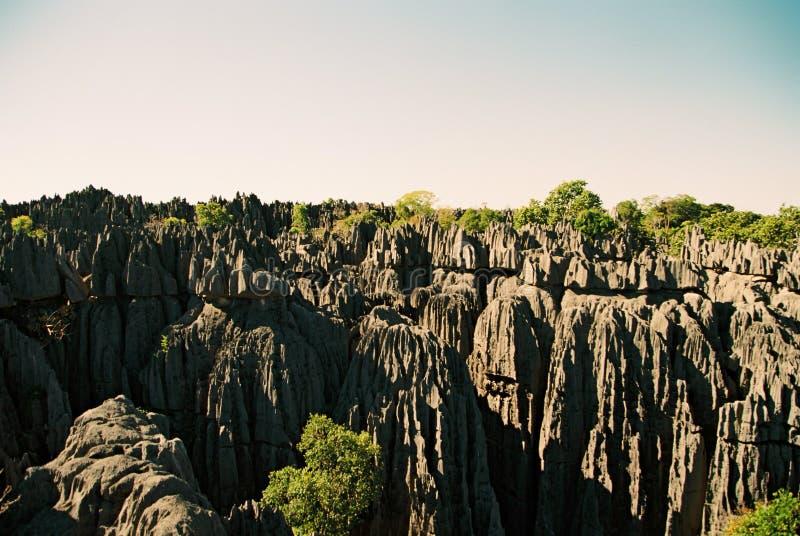Tsingy Madagaskar lizenzfreie stockfotos