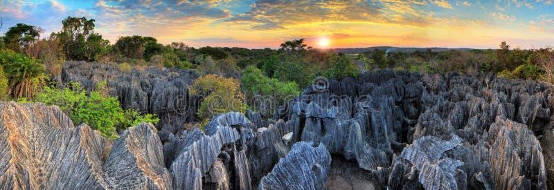 Tsingy panoramasolnedgång royaltyfri fotografi