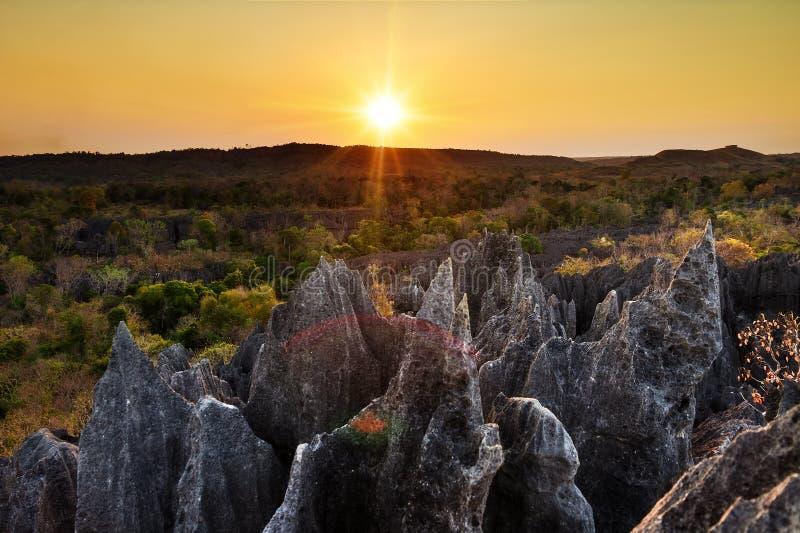Tsingy turismsolnedgång royaltyfri bild