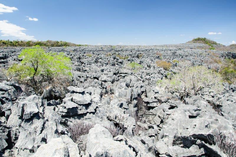 Tsingy van Ankarana stock fotografie