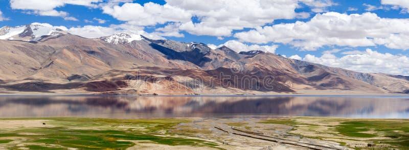 Tso Moriri山湖和山河洪泛区全景在喜马拉雅山 免版税库存照片