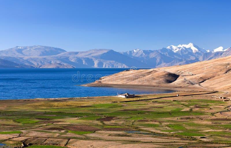 Tso Moriri jezioro w Ladakh, Północny India zdjęcie royalty free