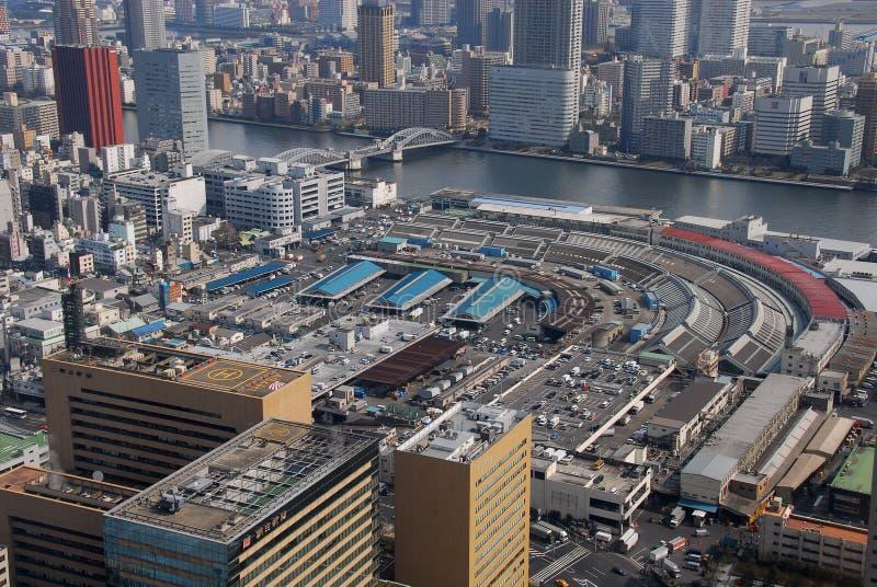 Tsukiji fiskmarknad från över royaltyfria foton