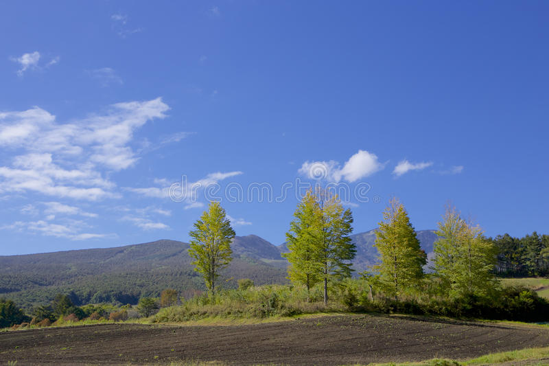 Tsumagoi landscape of the early autumn in Japan. Tsumagoi landscape of the early autumn royalty free stock photography